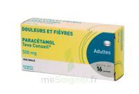 PARACETAMOL TEVA CONSEIL 500 mg, comprimé à VILLEFONTAINE