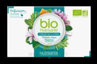 Nutrisanté Infusions Bio Tisane Confort de la gorge 20 Sachets à VILLEFONTAINE