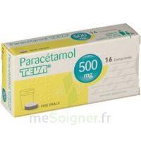 PARACETAMOL TEVA 500 mg, comprimé à VILLEFONTAINE