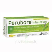 PERUBORE Caps inhalation par vapeur inhalation Plq/15 à VILLEFONTAINE