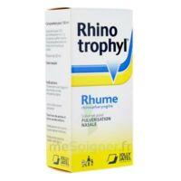 RHINOTROPHYL Solution pour pulvérisation nasale 1Fl/12ml à VILLEFONTAINE