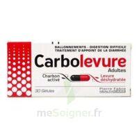 CARBOLEVURE Gélules adulte Plq/30 à VILLEFONTAINE