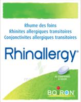 Boiron Rhinallergy Comprimés B/40 à VILLEFONTAINE