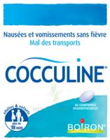 Boiron Cocculine Comprimés orodispersibles B/40 à VILLEFONTAINE